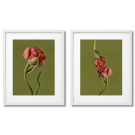 RED PEONIES ON GREEN BACKGROUND