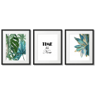 TIME IS NOW - PLANT-THEMED POSTERS