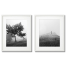 BIRCH TREES, 2 POSTERS