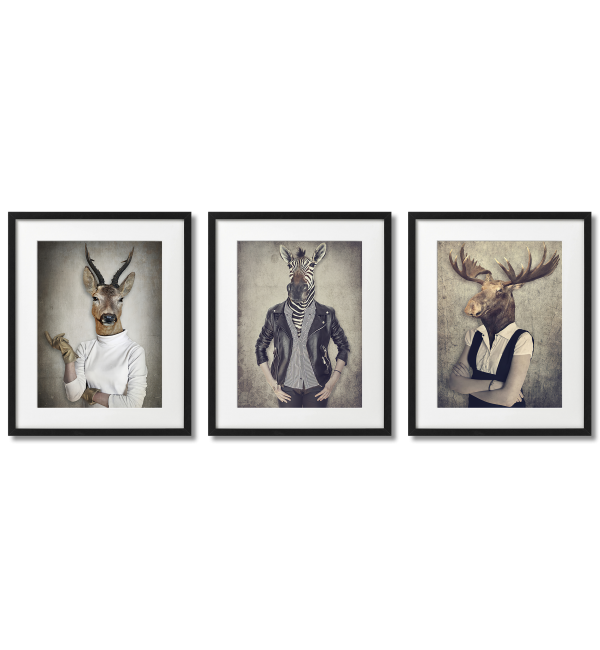 Billy goat, moose and zebra in clothes, funny posters