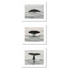 WHALE - TAIL, 3 MODERN POSTERS