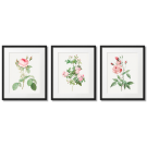 SHABBY CHIC POSTERS - ROMANTIC ROSES