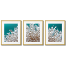 RAINDROPS ON A BLOWBALL, TURQUOISE POSTERS
