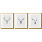 DEER, EVOLUTION, MODERN DESIGN GRAPHICS