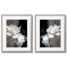 White flowers, 2 posters